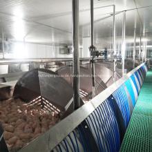 Vorkühlmaschine der Hühnerschlachtmaschine schrauben