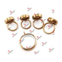 Liga de estoque de fornecimento flutuante lockets / vidro Locket anel vivo (fsl51024)