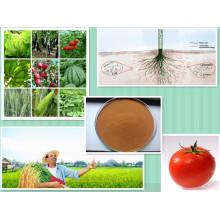 Bio engrais acide humique pour la croissance des racines des plantes