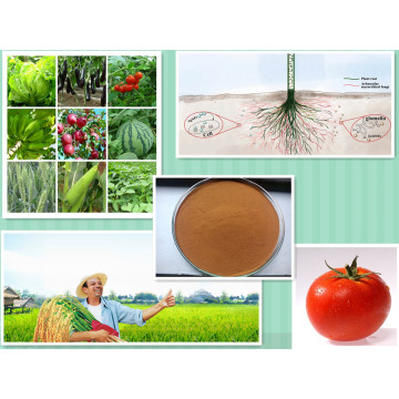 Organic NPK Compound Fertilizer Agricultural 40-50% Amino Acid Powder