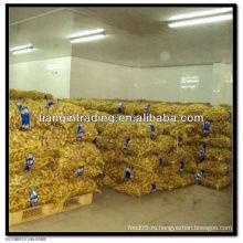 22 кг сетчатый мешочек имбирь
