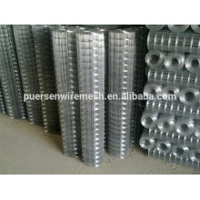 Anping Fábrica Hot Dipped Galvanized Welded Wire Mesh