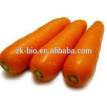 Cenoura Seca a Granel