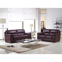 Electric Recliner Sofa USA L&P Mechanism Sofa Down Sofa (894#)