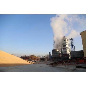 Vertical Grain Rice Dryer Machine
