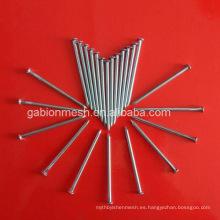 Clavos comunes del alambre / clavos galvanizados y clavos fábrica