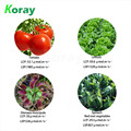 horticultura lighting hydroponics plant lamp energy conservation Ra97 high CRI led grow light