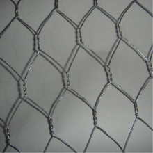 Aves de corral, producto Hexagonal Wire Netting