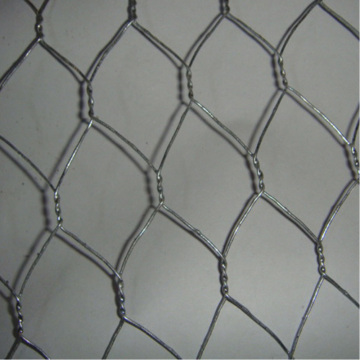 Filet hexagonal de produit de ferme avicole