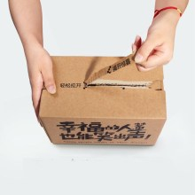 zipper carton box with printed logo