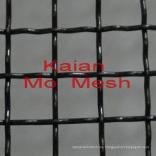 Malla de molibdeno pura / Malla de molibdeno negro / Malla de malla Anping proveedor fábrica de país