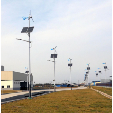 50W Wind Solar Hybird Street Light