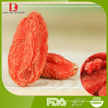 Chinese high quality conventional dried goji berries/wolfberry/wholesale red goji