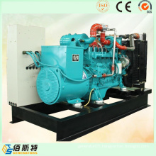 China Ng LNG LPG Gas Power Generation Manufacture