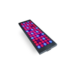 Full Spectrum LED Grow Light con CE RoHs