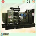 Silent 250kVA Electric Engine Diesel Generating Set Factory avec SGS