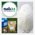 Detergent Enzymes, Alkaline Protease, Lipase, Amylase, Cellulase