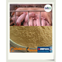 Pig feed enzyme