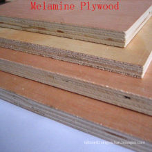 Economical Commercial Plywood with Good Quality and Prices