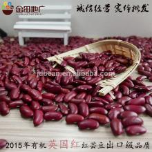 Frijoles rojos oscuros 2015 cultivo HPS tamaño 200-220 unids / 100g