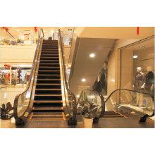 FUJI Escalier mécanique de la fabrication en Chine