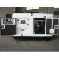 Печатная машина 30kw/30kva супер Молчком Тепловозный генератор/Электрический генератор