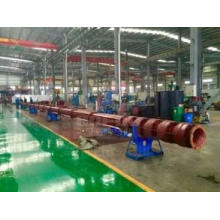 Vertical Long Shaft Centrifugal Water Pump