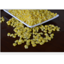 Personlized Products for Corn Bulk IQF Frozen Corn Kernels supply to Macedonia Factory