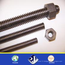 Achat en ligne High Tensile Thread Rod