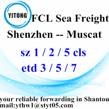 Shenzhen Professional Freight Forwarder Agent to Muscat