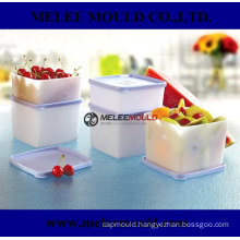 Anti-Toxic Plastic Food Container Mold