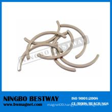 N50 Arc NdFeB Magnets with Ni Coating