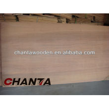 Contrachapado keuring con núcleo de madera dura (4x8 contrachapado)