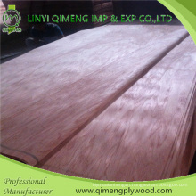 Size 1270X2520mm, 1270X1900mm, 760X2200mm, 920X2200mm Thickenss 0.15-0.50mm Bintangor Veneer with Cheaper Price