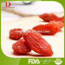 Baga de goji vermelha convencional / fabricante goji berry / fabricante de goji convencional