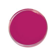 Poudre de coloration de thé de fruit de jus d'amarante E123 de colorants synthétiques