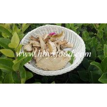 Grade AAA Dried Boletus Porcini Price Boletus