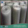 welded wire mesh galvanized welded mesh roll