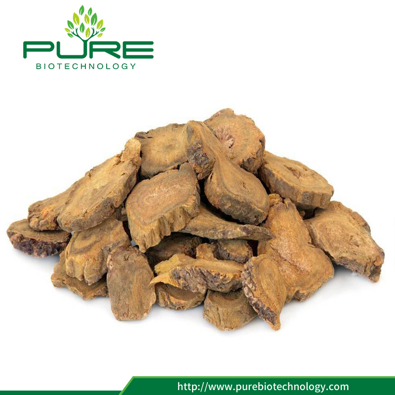 Low price Rhubarb root