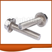Customized for Supply of Flange Bolts, Collared Hex Bolts, Heavy Hex Tap Bolts Manufacturers Hexagon Flange Bolt with Serration export to Singapore Importers