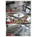 DPH330E Automatische Kapsel Blister Verpackungsmaschine