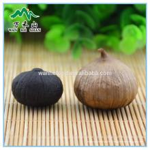 Forme environnementale Extrait d'ail noir à l'ail fermenté