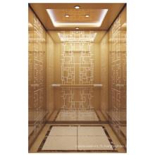Ascenseur élévateur de passagers sécurisé et populaire pour le bâtiment