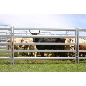 Australia El panel galvanizado caliente de la yarda del ganado del DIP caliente usado para la venta