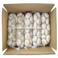 Chinese New Crop Purel White Garlic