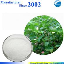 Herstellung liefern 100% naturrein Stachyose Tetrahydrat 10094-58-3