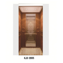 Villa Ascensor con madera y Champaign oro mate acero inoxidable (KJX-BS05)