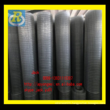 galvanized square welded wire mesh/galvanized welded wire mesh net