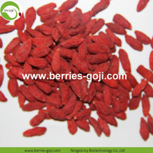 Fuente de la fábrica Natural Price Fruit Goji Berry