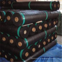 Weifang Supply 100% Virgin Biodegradable Anti UV Weed Control Geotextile Fabric